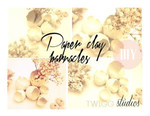 paper clay barnacles
