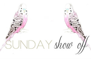 sunday show off linky party