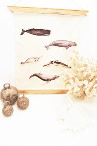 faux vintage whale species chart and restoration hardware inspired fishing weights tutorial