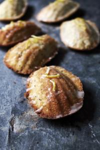lemon poppy seed madeleines