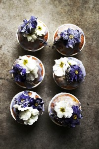 lavender cupcakes with candied primroses