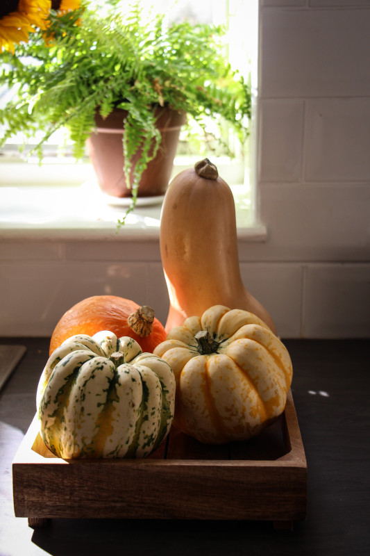 pumpkin pies baked inside squashes-1