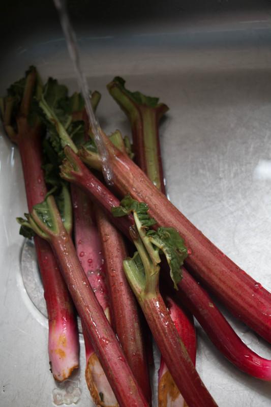rose pomegranate roasted rhubarb-1-7