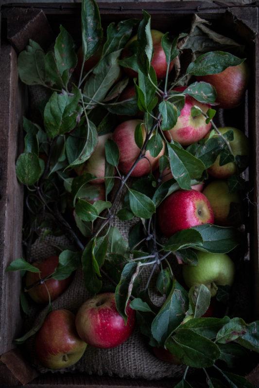 vegan-apple-cinnamon-buns-1-7