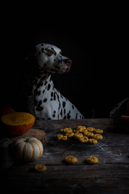 three ingredient pumpkin cheddar dog cookies