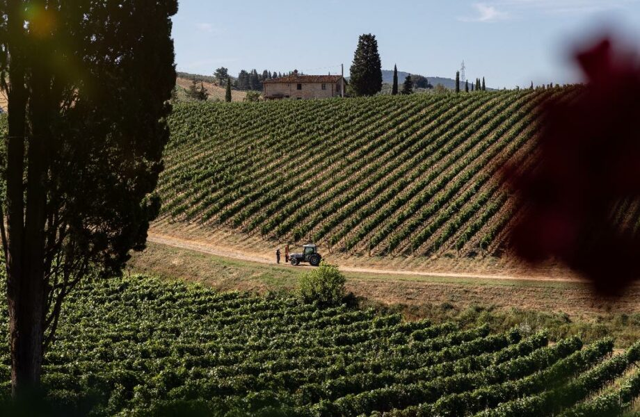 Chianti – The wine region of Italy and making pici pasta